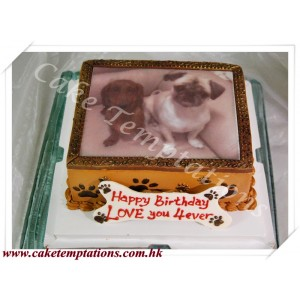 Photo Printing cake- Little Dog