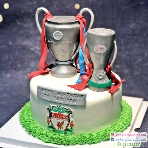 Liverpool Trophy Cake